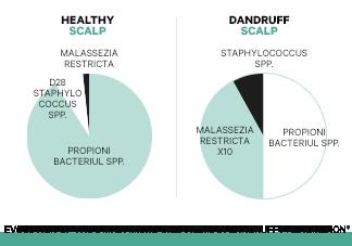 Niezrównoważony mikrobiom