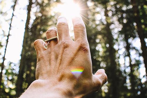 Ekspozom - słońce i dłoń